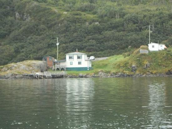 Fishing Point Bed and Breakfast: Picture from a boat of the B&B, we were going Whale watching