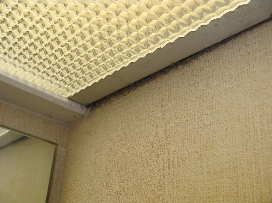 DoubleTree by Hilton San Jose: Bathroom light fixture dust and/or mold