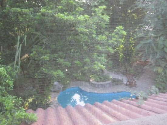 Casa Quetzal: view from the room