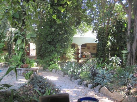 Casa Quetzal: the garden