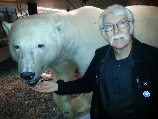 Mary-Ann's Polarrigg: Polar bear friend 