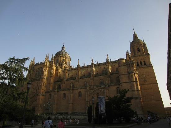 catedral salamanca - Picture of New Cathedral (Catedral ...