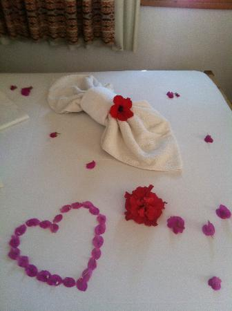 Arian Hotel: Flowers on the bed