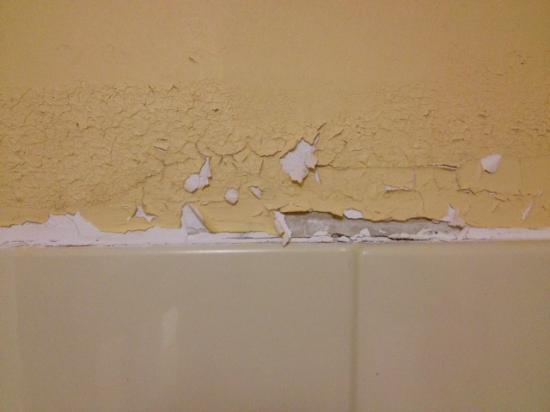 Oakwood, GA: Peeling paint over shower