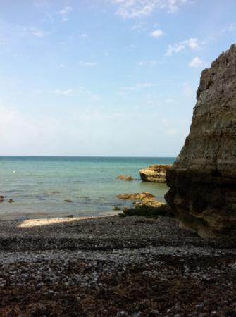 Flower Camping la Chênaie : great beaches to explore