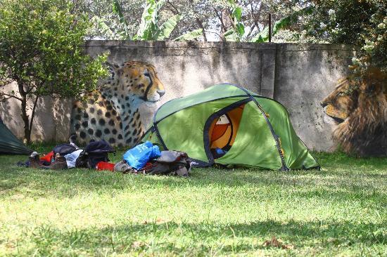 Sakina campsite: Our tents