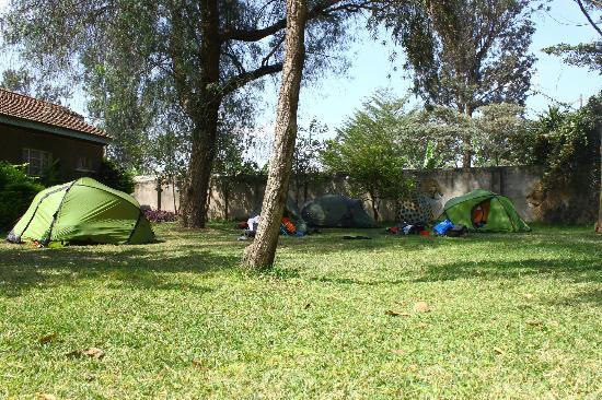 Sakina campsite: Most of front greenery