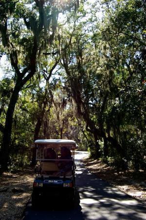 Hugh S Branyon Backcountry Trail Orange Beach All You