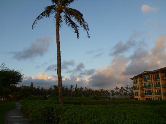 Waipouli Beach Resort: 海岸線からの眺め