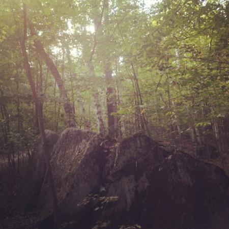 Hubbard Park: hiking