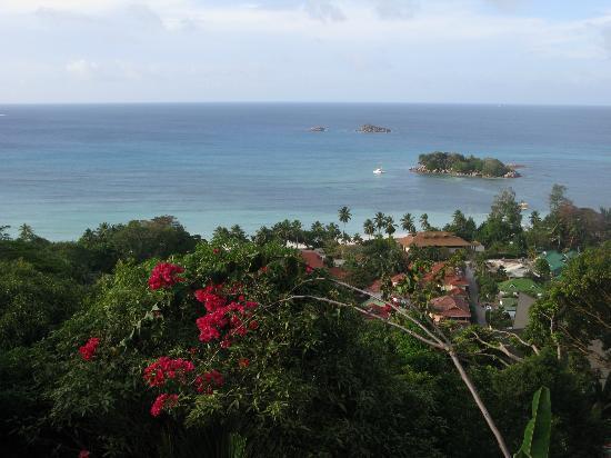 Mango Lodge: Veduta dalla terrazza