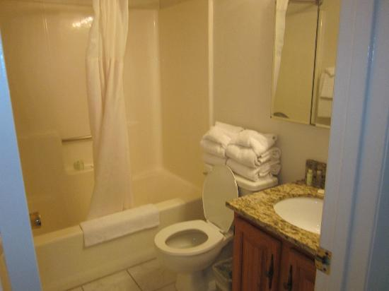 Marigot Beach Suites: bathroom