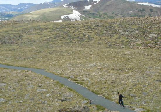 Tundra Communities Trail : High Elevation Training -- not advised unless you're acclimatized