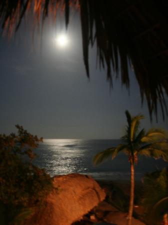 Estrella Fugaz : Vista de Luna