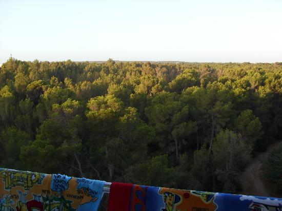 Seramar Luna Luna Park: view from room 430Luna hotel side