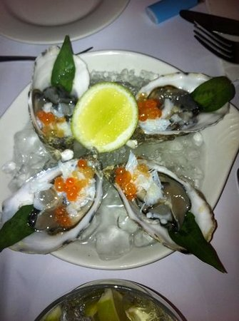 Coconut Grove: oysters