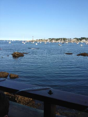 The Barnacle : What a view from out outdoor seating!