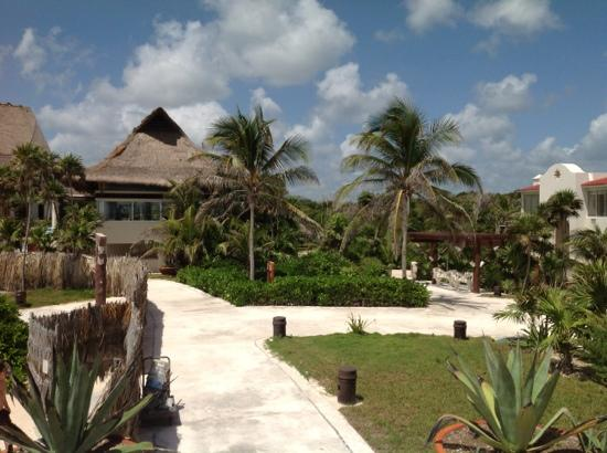 Kore Tulum Retreat and Spa Resort: lanscape kept up