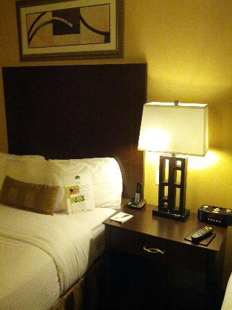 Wingate by Wyndham Tinley Park: Our room