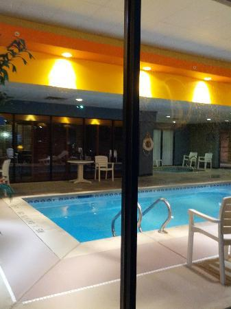 Wingate by Wyndham Tinley Park: Hotel pool