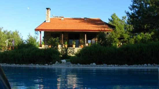 Dikencik Cottages : From the pool