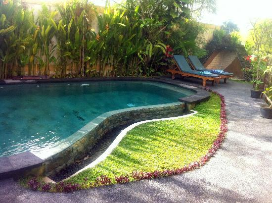 Junjungan Ubud Hotel and Spa: Hotel pool