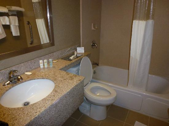 Quality Inn Central: Bathroom