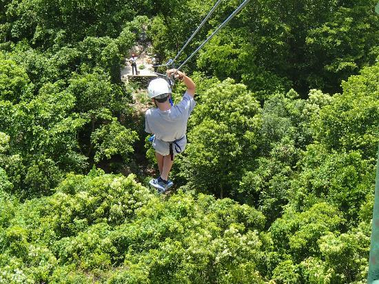 Barcelo Dominican Beach: Part of Zip Line tour