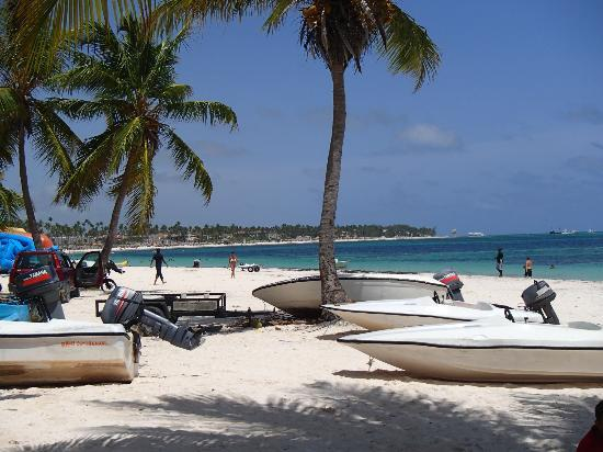 Barcelo Dominican Beach: Snorkel trip