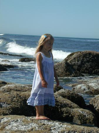 The Coho Oceanfront Lodge: My granddaughter exploring the tide pools