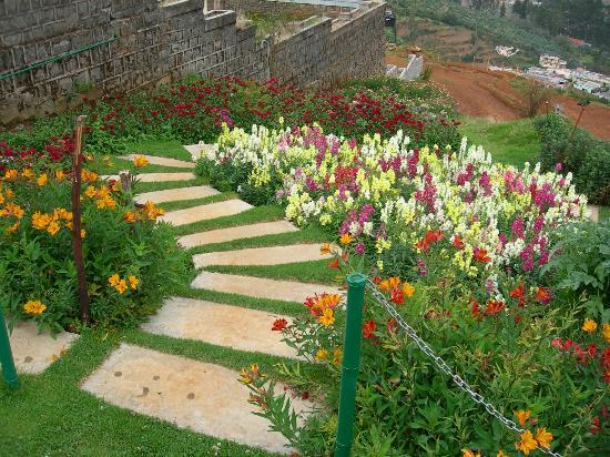 Sinclairs Retreat Ooty: Garden