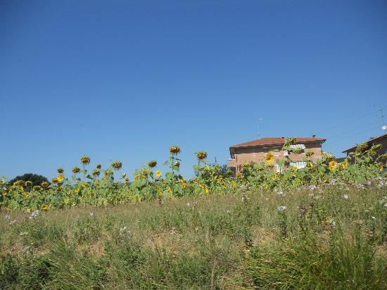 Residence Selvatellino: il panorama