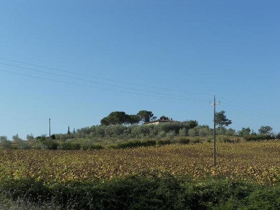 Residence Selvatellino: panorama 2