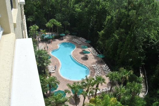 Vacation Village at Parkway: the pool