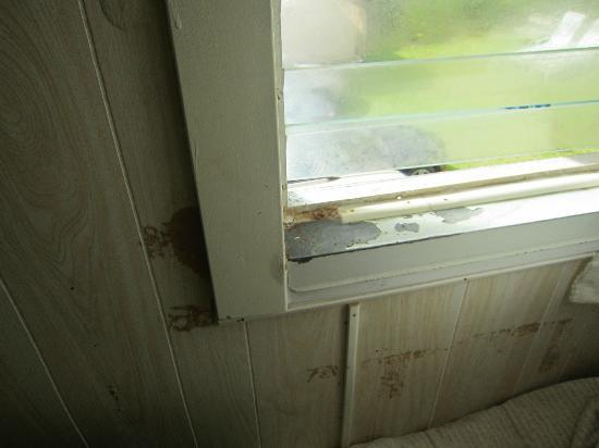 Joe's Place: Das nicht verschließbare Fenster ohne Fliegengitter