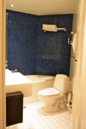 Hotel Seurahuone Helsinki: バスタブとトイレ