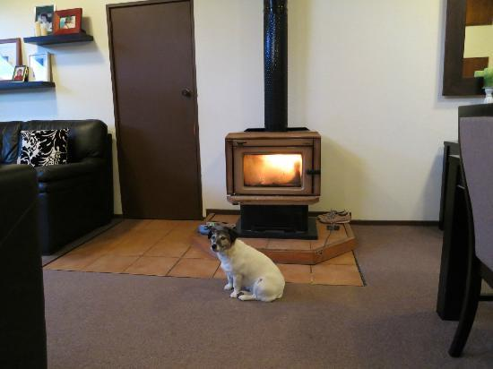 Reflection Lodge: Beastie by the fireplace