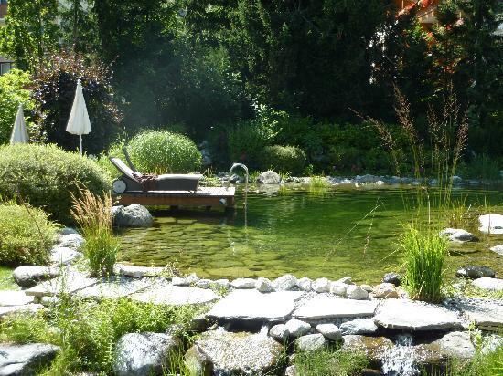 Hotel Salzburgerhof: The natural swimming pond at Hotel