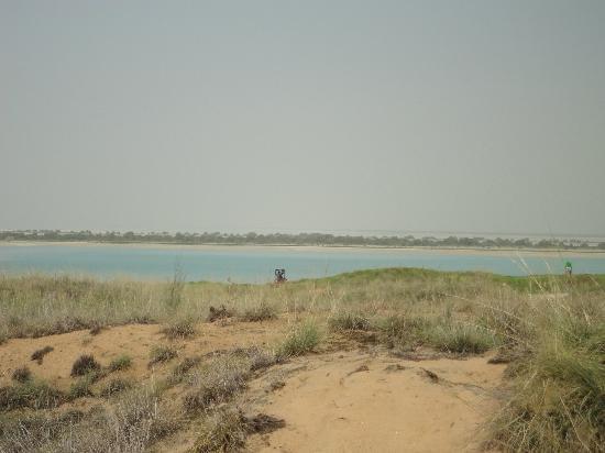 Radisson Blu Hotel, Abu Dhabi Yas Island: Vista dalla piscina