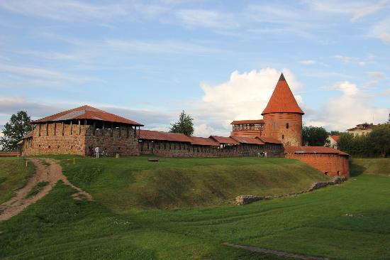 Апарт-отель Kaunas: Каунасский замок