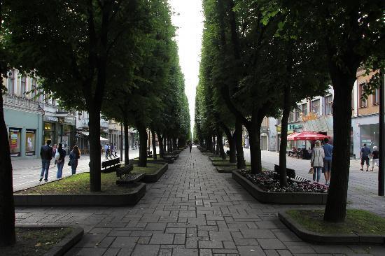 Kaunas Apartments: Пешеходная улица в центр города