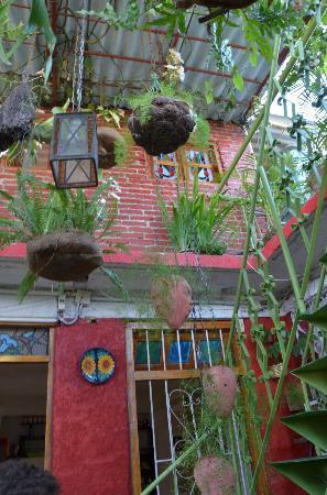 Casa jardin updated 2018 reviews photos santiago de for Casa mansion los jardines havana
