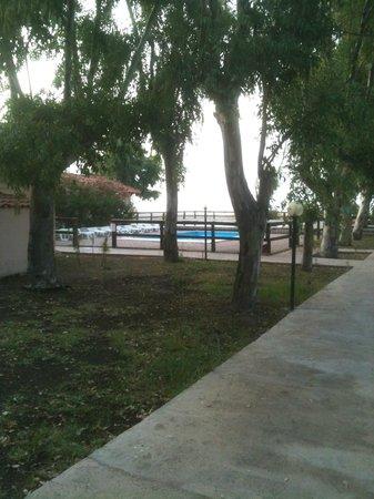 Simenzaru Wild Village: Vista della piscina dal vialetto