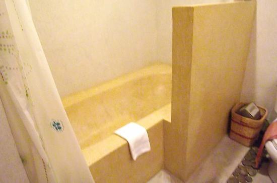 Frangipani Fine Arts Hotel: バスルーム