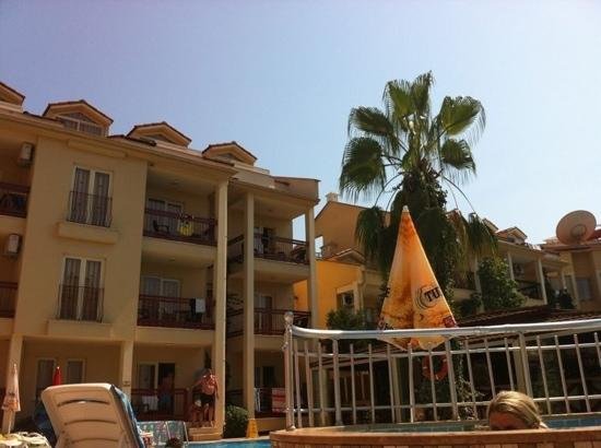 Club Amaris: view from my sun bed