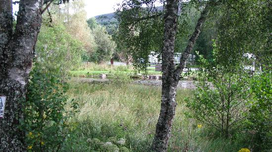 Parkdean - Tummel Valley Holiday Park: View from our caravan