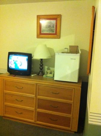 Colonial Resort & Spa: Tiny TV and fridge