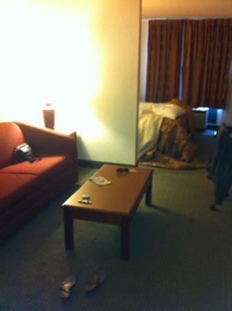 BEST WESTERN PLUS Hotel & Suites Airport South: sofa area