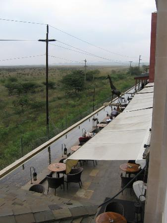 Ole Sereni: View of patio from room