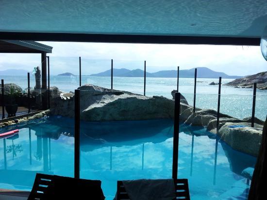 East Bedarra Island Retreat: The plunge pool